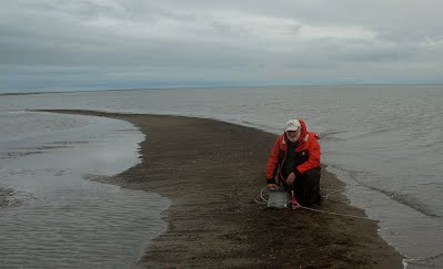 Sampling From a Sand spit  in the Beaufort Sea Arctic Ocean  BArrow