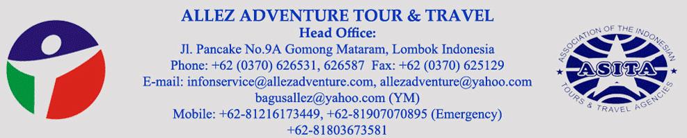 Diving Blue Coral S Lombok Lombok Tour Travel With Allez Adventure