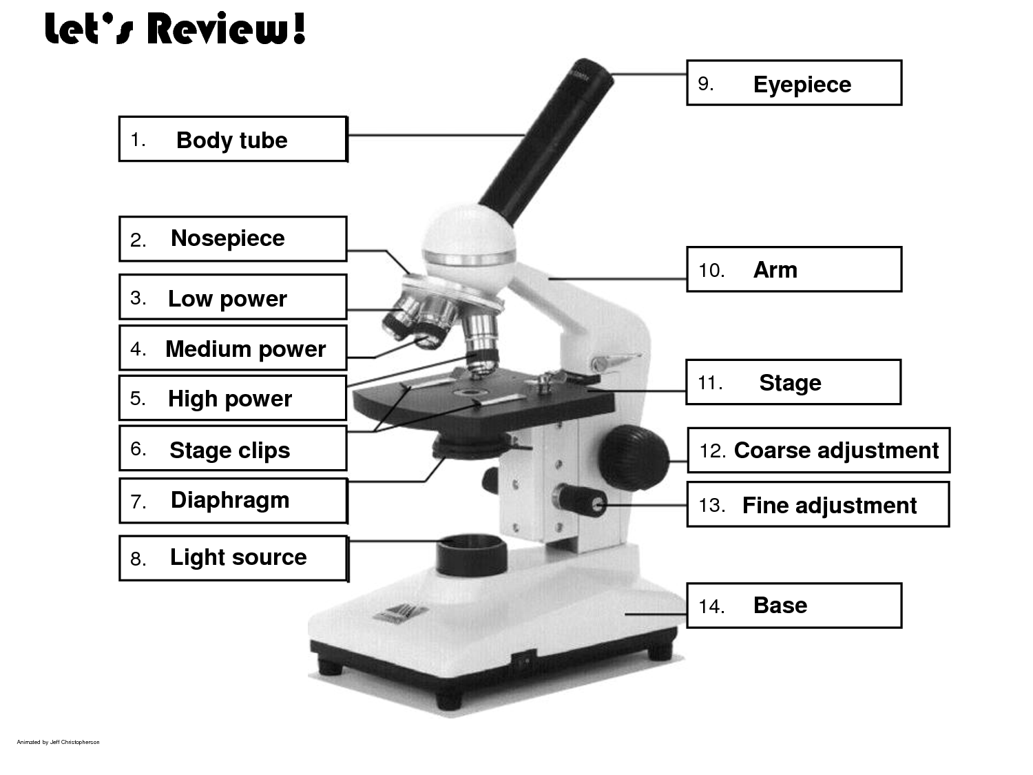Microscope Use Worksheet Free Worksheets Library – Microscope Quiz Worksheet