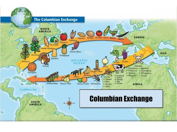Image result for columbian exchange map