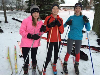 Nordic Skiers 2