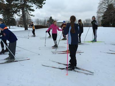 Nordic Skiers 3