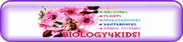 http://www.biology4kids.com/