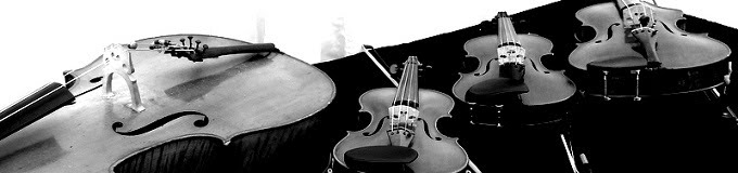 Astaria Ensemble Stringed Instruments