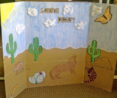 kindergartensonoran desert sensory habitat sonoran