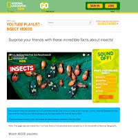 Nat Geo Insects picture