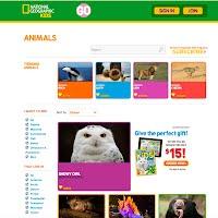 Nat Geo Animals picture 2