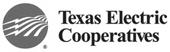 Texas Electric Co-op