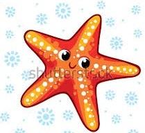 Starfish English 18 -19