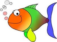 Rainbowfish English 18 - 19