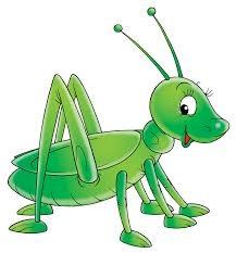 Grasshopper - Arabic