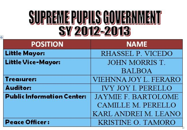 supreme student goverment election