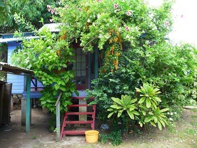 Calabash cottages barrett adventures tours in jamaica for Calabash cottage