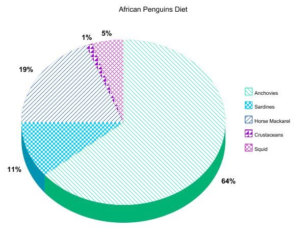 Charts and graphs african penguins an endangered species charts and graphs altavistaventures Gallery
