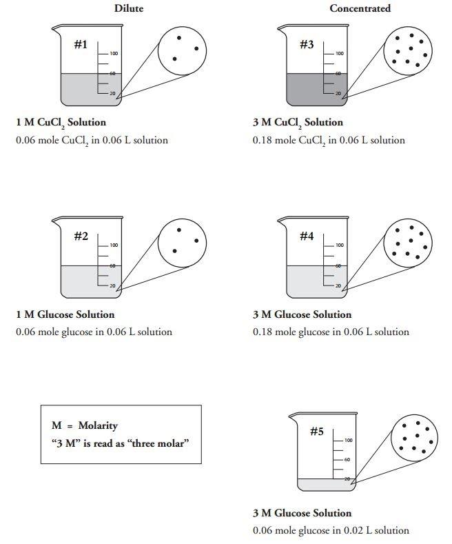 Molarity POGIL - WCHS - Chemistry 2013