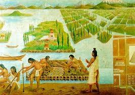 Chinampas In Aztec Mexico Wh13 Fgln Pre Columbian Mesoamerica