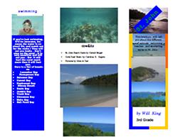 This is a thumbnail image of and link to a .pdf (portable document file) version of a brochure about St. John Beach that was created with Microsoft Publisher.