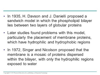 evidence for and against the davson danielli Membranes are also dynamic, constantly  danielli and davson  not concentrated against a gradient nor is energy required.