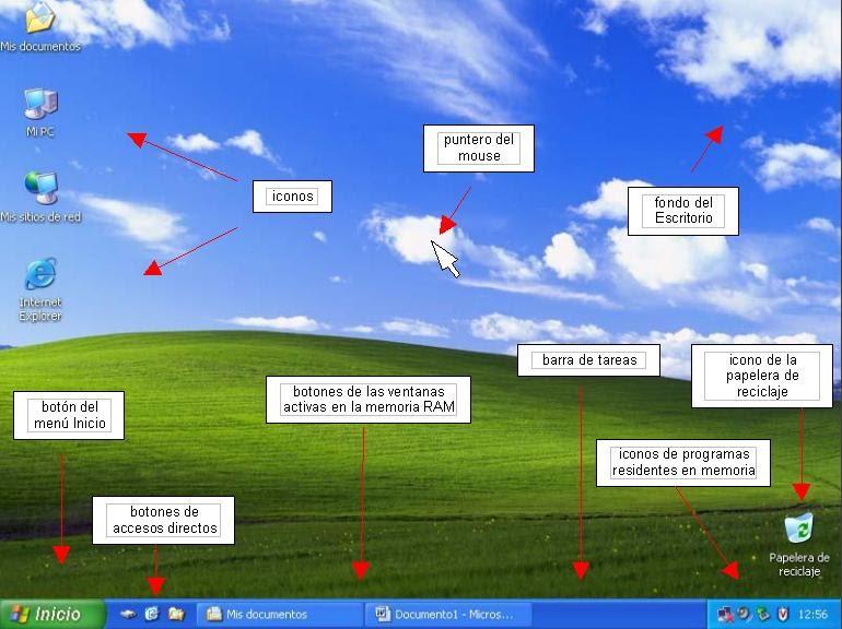 Conceptos Básicos De Windows