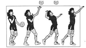 biomechanical principles applied to a volleyball serve Biomechanis of a volleyball spike  blog you will be learning about the physics/biomechanics behind a volleyball spike and why we  a volleyball serve.