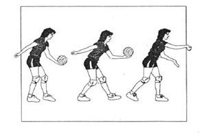 biomechanical analysis of volleyball serve Introduction to sports biomechanics  exploring the essence and purpose of movement analysis  (biomechanical) principles 76 vii.