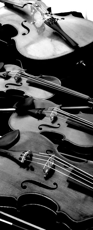 String Quartet Instruments