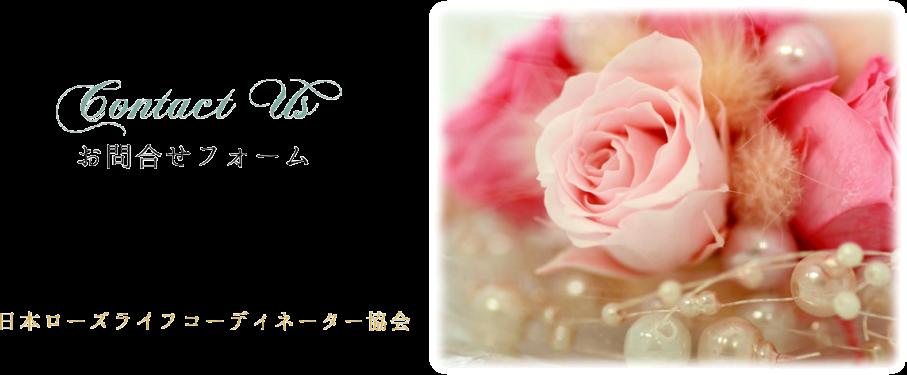 Contact Us~お問合せ~