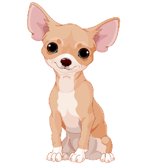 chihuahua_Grey_and_White_Cartoon_Image_1