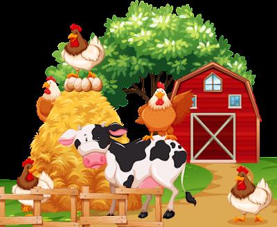 Farm Animal Images