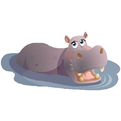 Funny Hippo Images - Hippopotamus Images