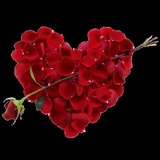 love heart shaped flowerflower - photo #17