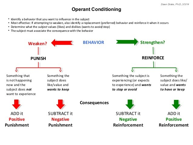 bf skinner operant conditioning