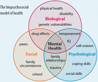 biopsychosocial perspective on personality how did Although a biopsychosocial view is prominent in psychiatry and medicine,  the  personality and sociological factors associated with health.