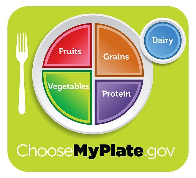 Food Diagrams - Healthy Life Choices
