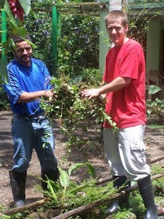 Volunteer working with costa rican