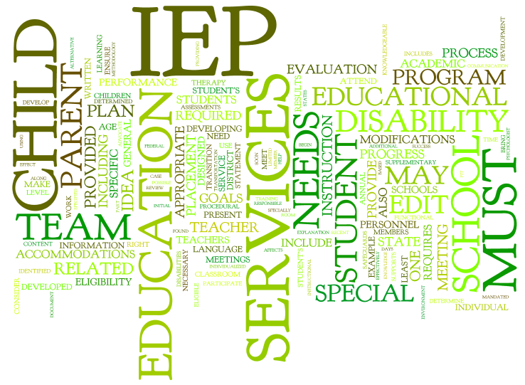 E. Documentation and Paperwork including IEP's & other Paperwork ...