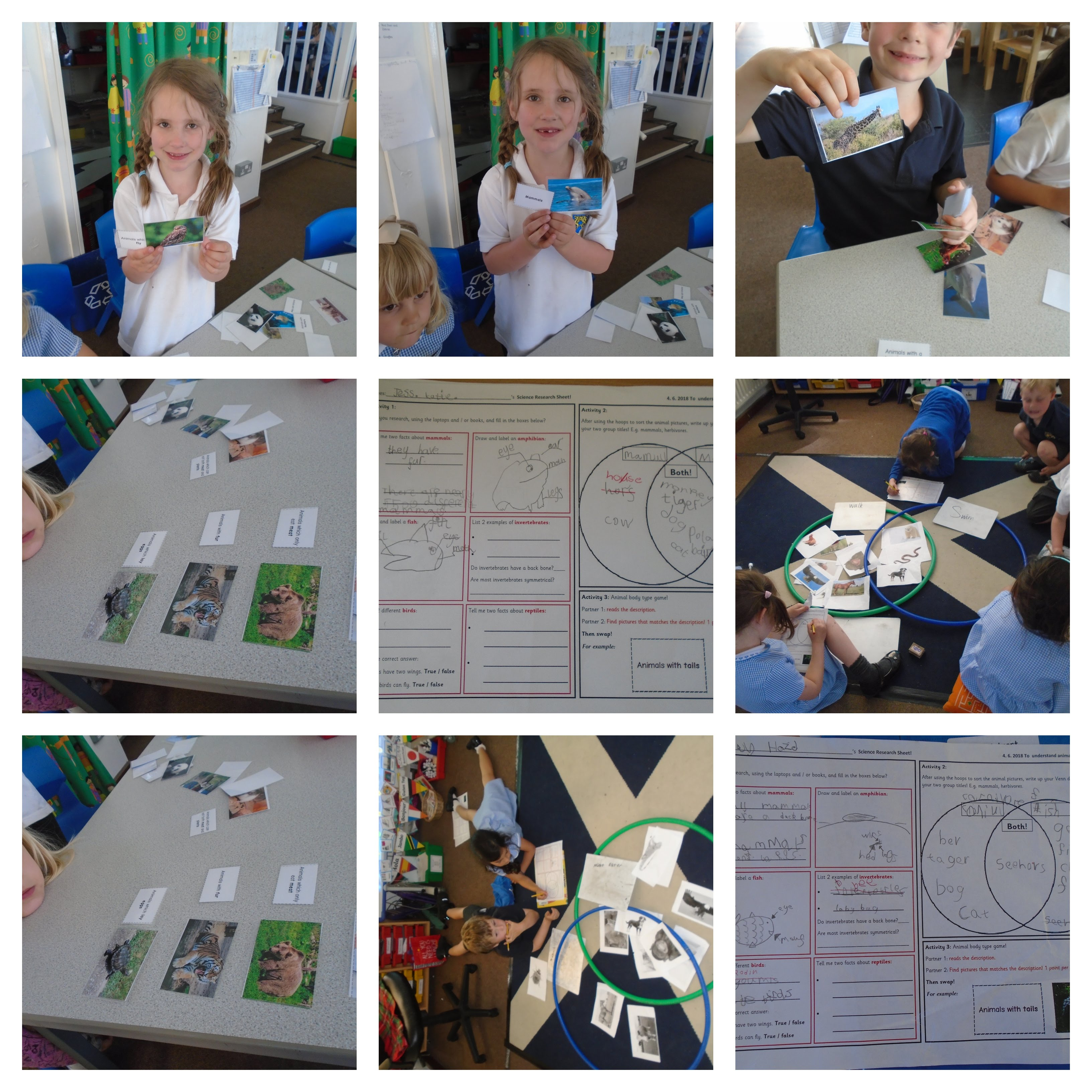Week 1 - Our Science Learning - Dore Primary School