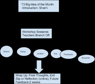 T3 Organization