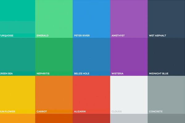 This Color Palette Comprises Primary And Accent Colors That Can Be Used For Illustration Or To Develop Your Brand Theyve Been Designed Work
