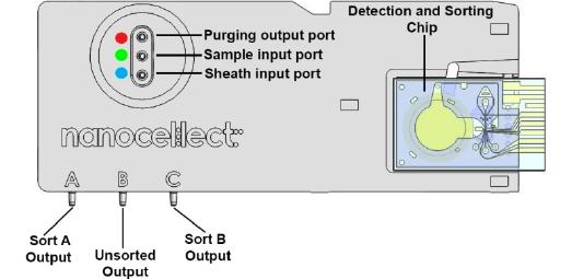 K Peak Detection Circuit Design Fr Dr Sunghwan Cho