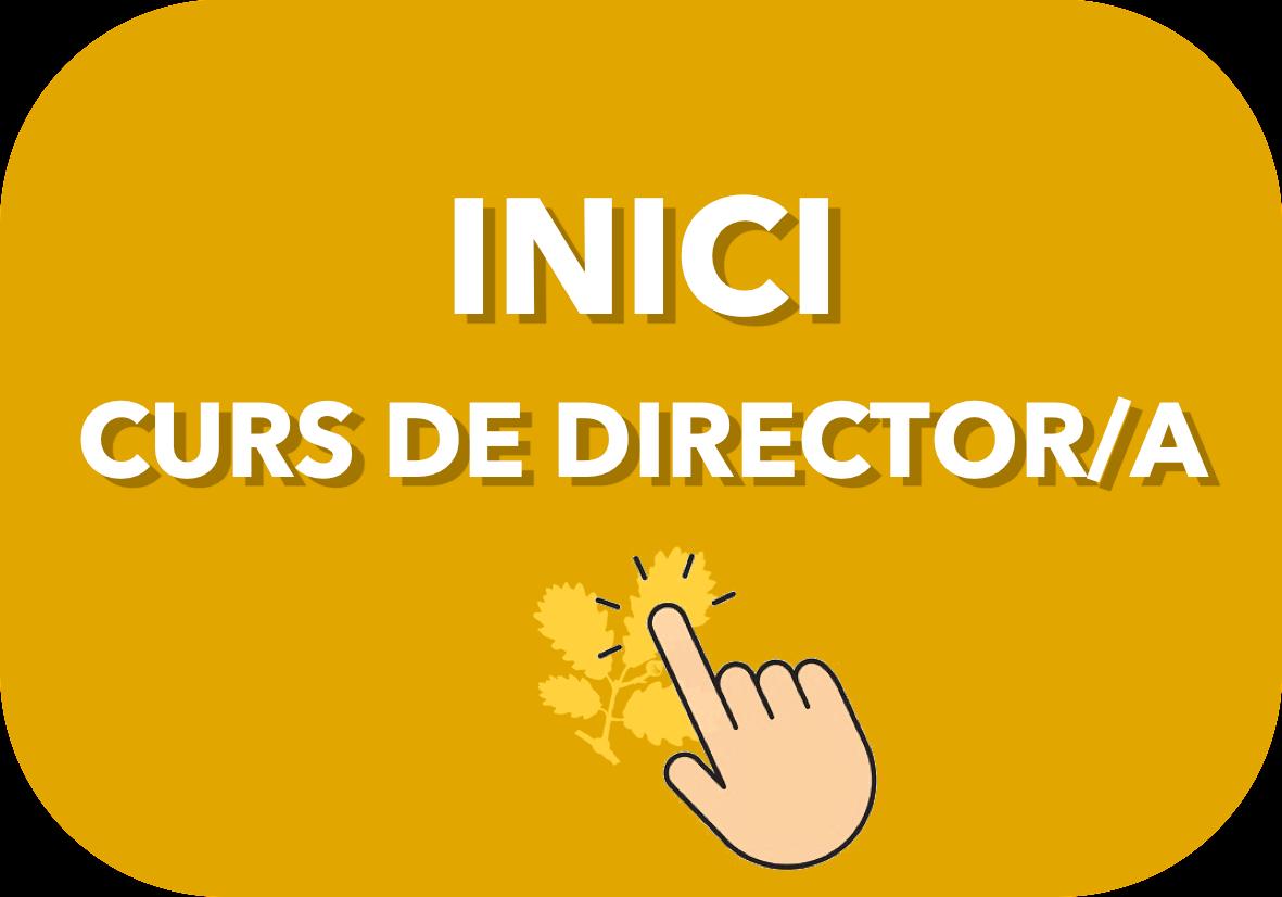 2) ✅ CURS DE DIRECTOR/A │ D