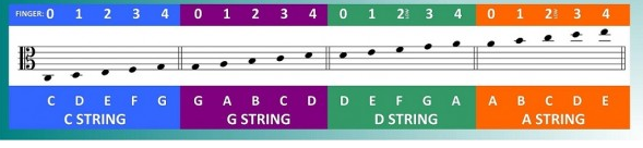 Cello Note Chart With Correlating Strings And Fingers