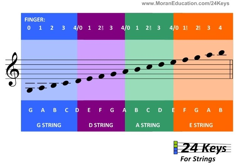 Beginners: Notes on the Staff and What String They Are On