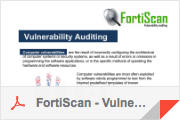 FortiScan - Vulnerability Audit, presentation.pdf