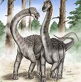 maxakalisaurus.jpg