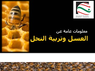 https://docs.google.com/a/ewb-lebanon.org/uc?authuser=1&id=0B2t140CDs0eISG5hcWkzeFFyaDQ&export=download