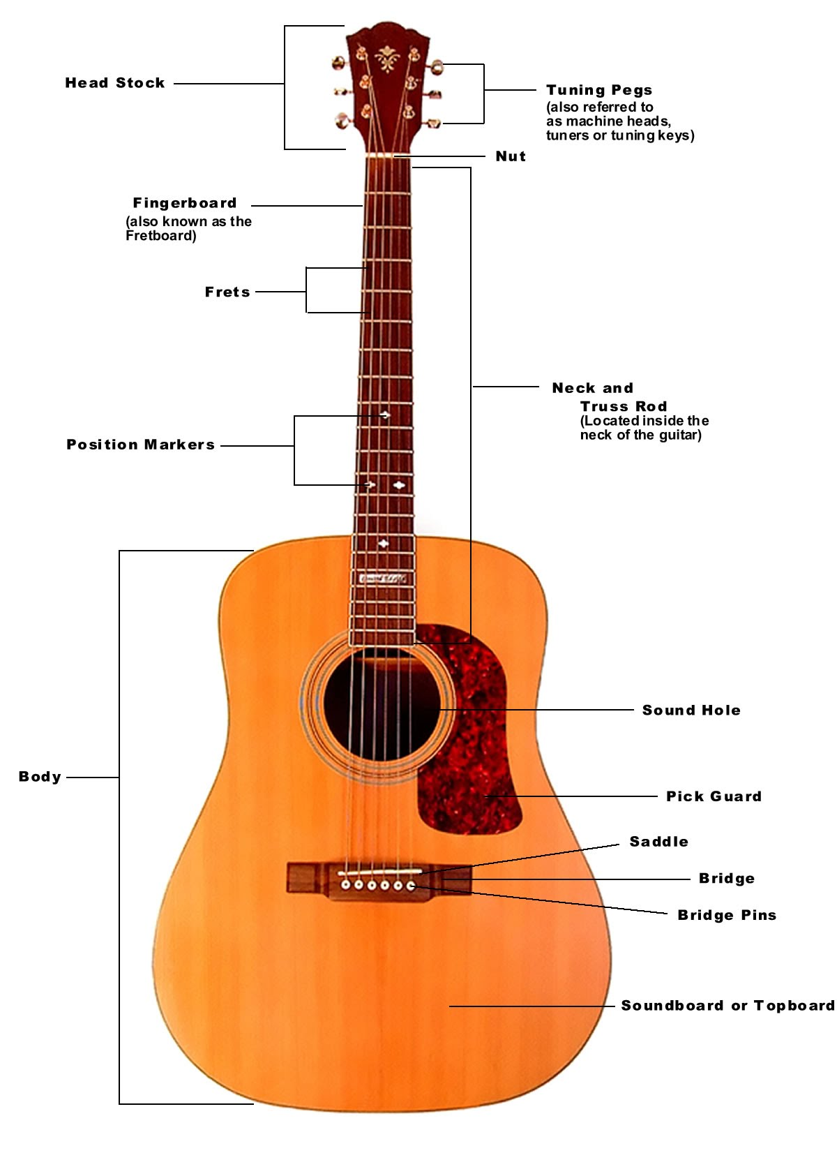 the-parts-of-the-acoustic-guitar-good.jpg