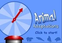 http://interactivesites.weebly.com/animal-adaptations.html