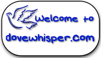 http://www.dovewhisper.com/computercenter.htm