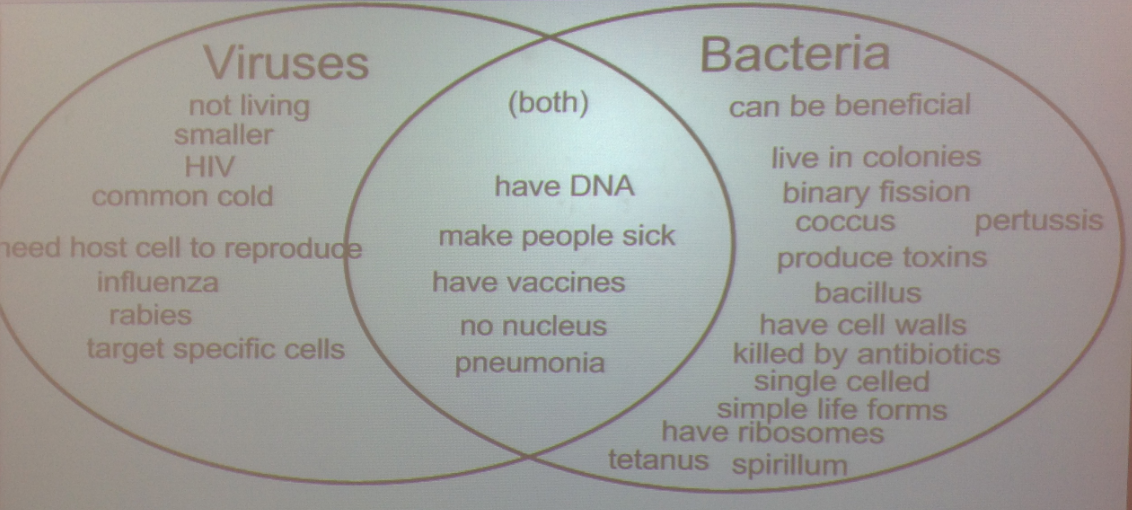 Biology - Carr Science 12-13